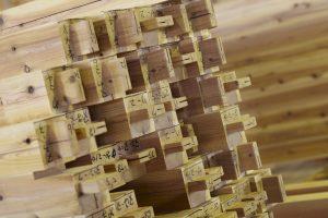 構造材は全て無垢材を使用。乾燥無垢材で100年住宅