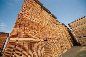 床材も自社工場で乾燥無垢材を加工。反りのない無垢フロアでひらやの家を